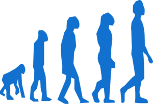 Evolution Of Man Clip Art