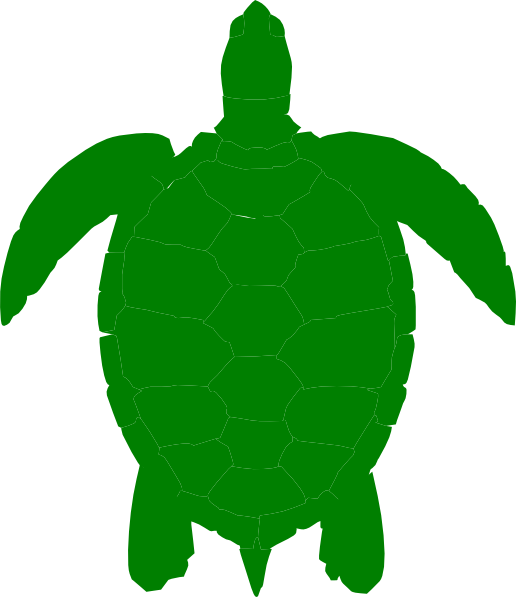 Green Sea Turtle Clip Art at Clker.com - vector clip art ...