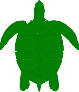 Green Sea Turtle Clip Art