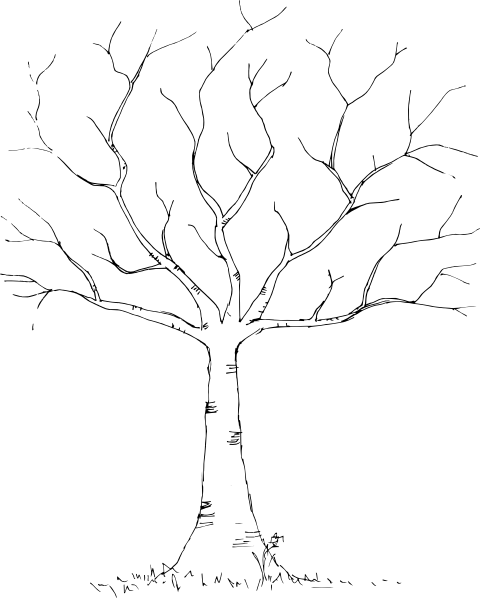 Tree Black Amp White Clip Art At Clker Com Vector Clip Art