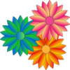 Multi Coloured Daisies Clip Art