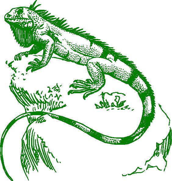 iguana clip art at clkercom vector clip art online