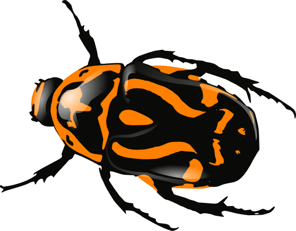 beetle orange clip art at clker com vector clip art online rh clker com beetle car clipart beetle clipart black and white