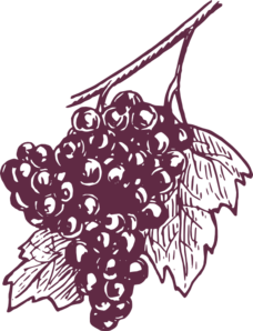 Dark Grapes Clip Art