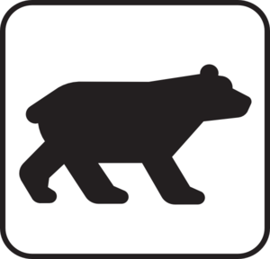 Bear Viewing White - Large Clip Art