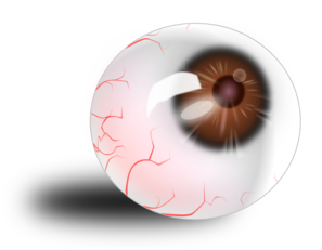 Eyeball Brown Bloodshot Clip Art