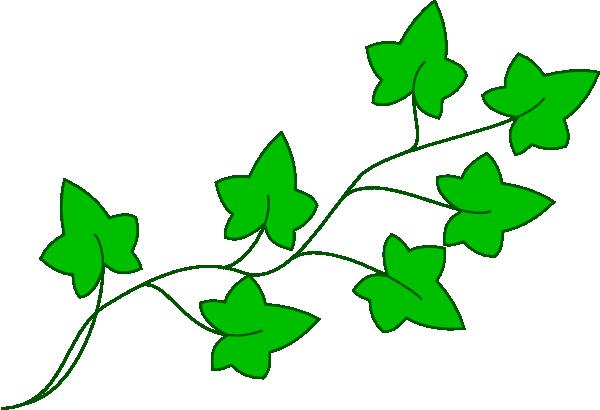 ivy vine clip art at clker com vector clip art online royalty rh clker com clip art wine bottle and glass clip art vans