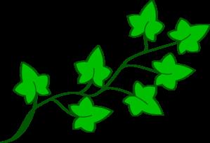 ivy vine clip art at clker com vector clip art online royalty rh clker com vine clip art free vine clip art free