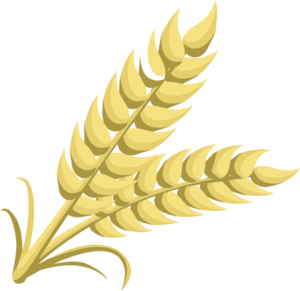 Grain Clip Art at Clker.com - vector clip art online, royalty free ...