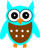 Turquoise Brown Owl Clip Art