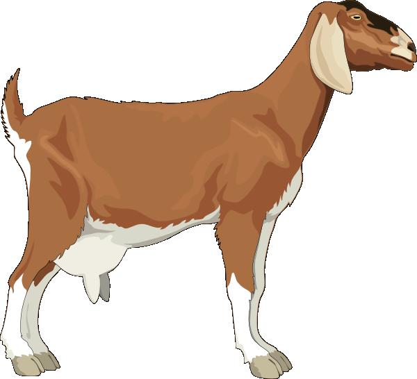 Goat Clip Art at Clker.com - vector clip art online ...