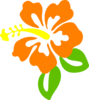 Orange Hibiscus Clip Art