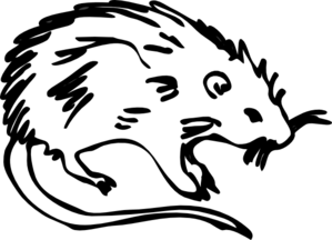 Rat Outline Clip Art