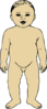 Anterior View Of Infant Clip Art