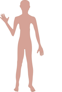 Female Body Real One Clip Art