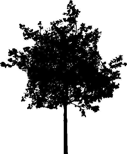 clip art tree silhouette - photo #1