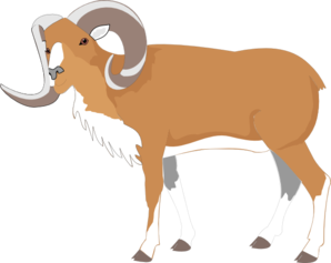 Big Horns Sheet Clip Art