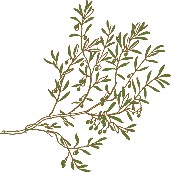 clipart tree branch borders - photo #27