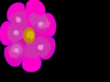 Pflower Clip Art