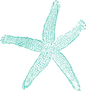 Single Starfish Turquoise Clip Art