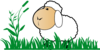 Sheep With Grass Clip Art
