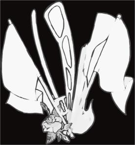 Color Guard Clip Art at Clker.com - vector clip art online ...
