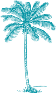 Dark Teal Coconut-palm-tree Clip Art