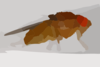 Fruit Fly Big File Clip Art