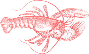 Coral Lobster 2 Clip Art