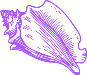 Conch Shell Clip Art