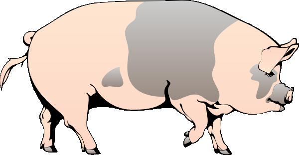 Pig Walking Clip Art at Clker.com - vector clip art online ...