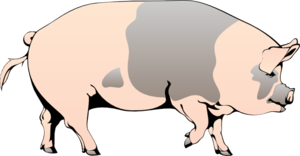 Pig Walking Clip Art