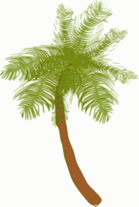 Small Palm Tree (edited) Clip Art