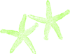 Lime Green Starfish Clip Art