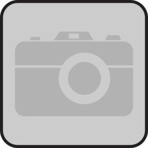 Camera Gray Disabled Clip Art