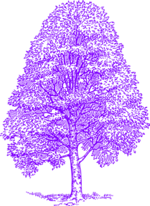 A Purple Silhouette Beech Tree Clip Art