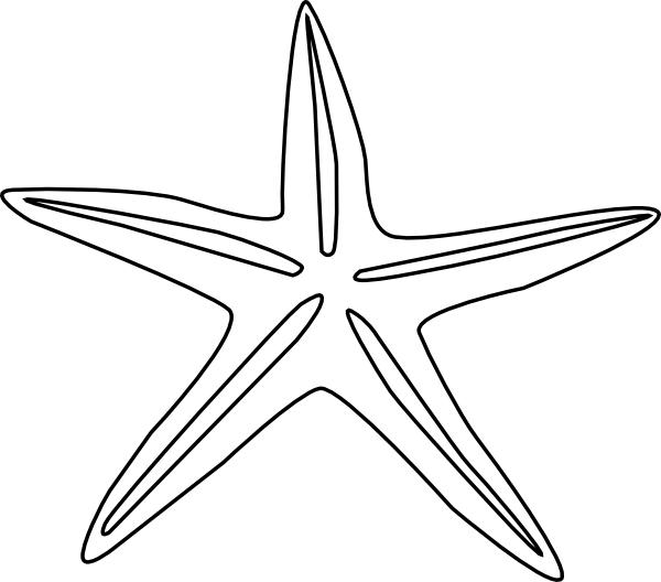 Small Starfish Drawing Png Small · Medium · Large