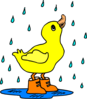 Duck In The Rain Clip Art