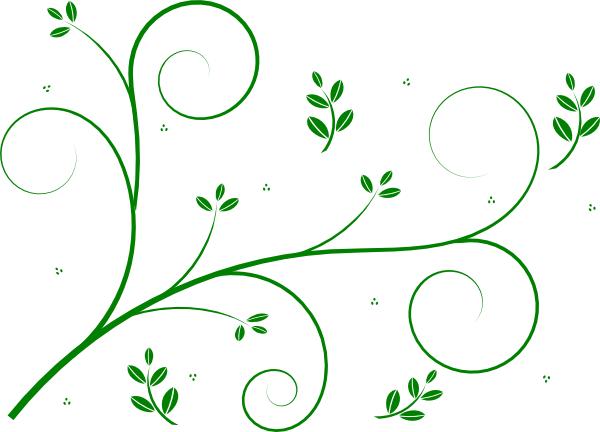 Green Flower Line Drawing : Green floral vine clip art at clker vector