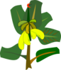 Bananas On The Tree Clip Art