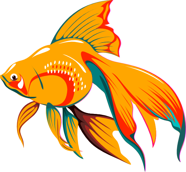 fish clipart drawing - photo #10