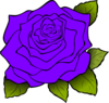 Purple Rose Clip Art