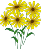 Daisy Bunch Clip Art