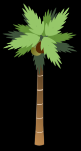Palm Tree With Coconuts Black Clip Art