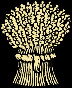 grain bushell clip art at clker com vector clip art online rh clker com grains clipart pictures grain clipart png