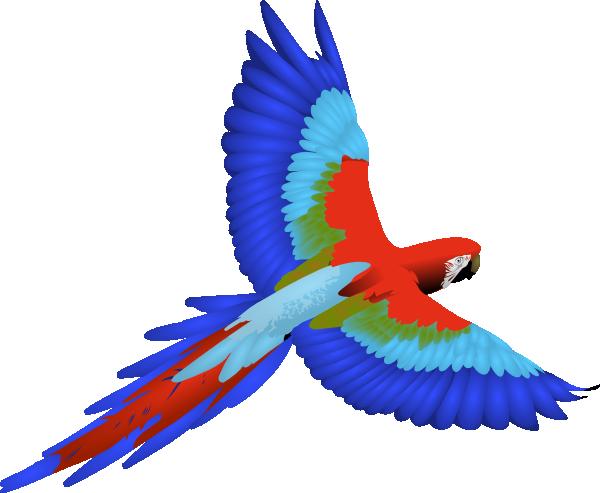 Parrot clip art - photo#6