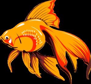 golden fish clip art at clker com vector clip art online royalty rh clker com