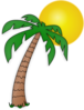 Palm Tree Under The Sun Clip Art