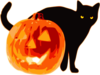 Halloween Cat With Pumpkin Clip Art