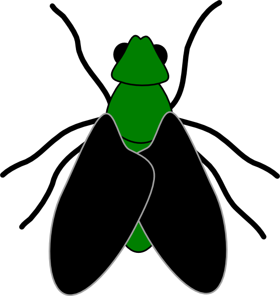 green fly black clip art at clker com vector clip art online rh clker com clip art flying clip art flyer